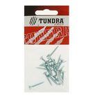 Саморезы универсальные TUNDRA krep, 4х25 мм, цинк, потай, 20 шт.