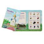 Коллекция натуральных камней на открытке «Новосибирск»