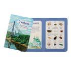 Коллекция натуральных камней на открытке «Тюмень»