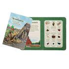 Коллекция натуральных камней на открытке «Челябинск»