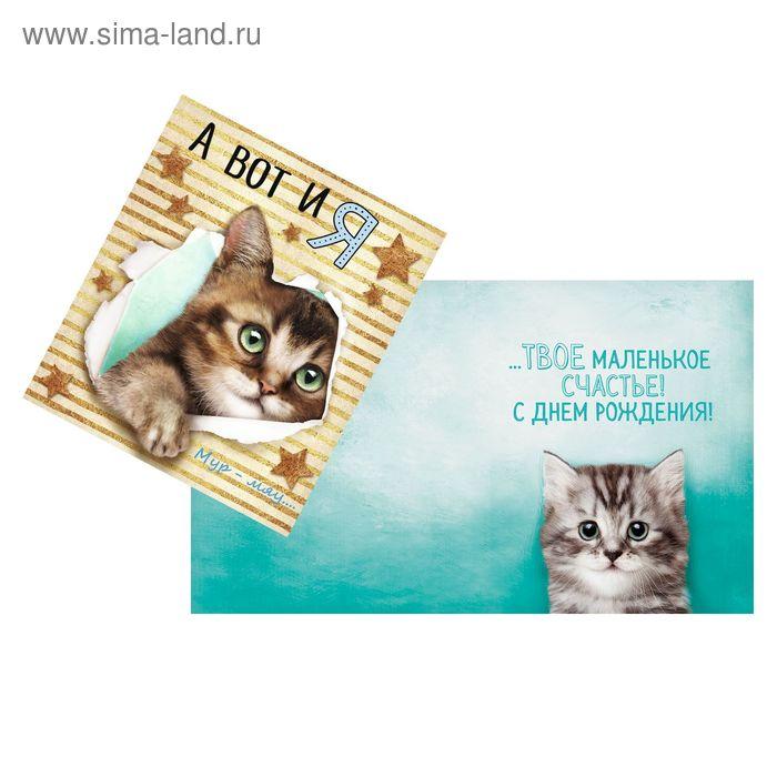 Открытка «А вот и я», котёнок, 14 х 16 см
