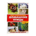 """Mini-encyclopedia """"poultry world"""", 20 pages"""