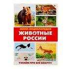 Мини-энциклопедия «Животные России», 20 страниц