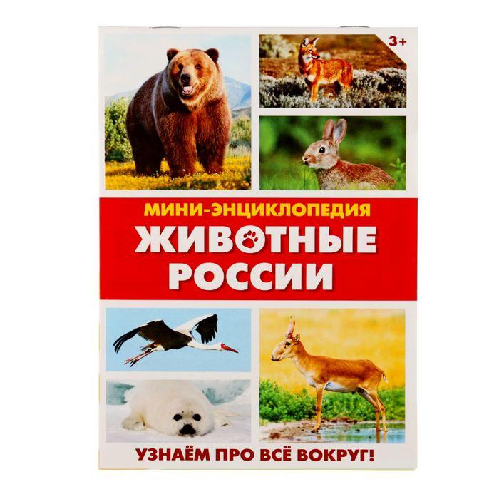 """Мини-энциклопедия """"Животные России"""", 20 стр."""