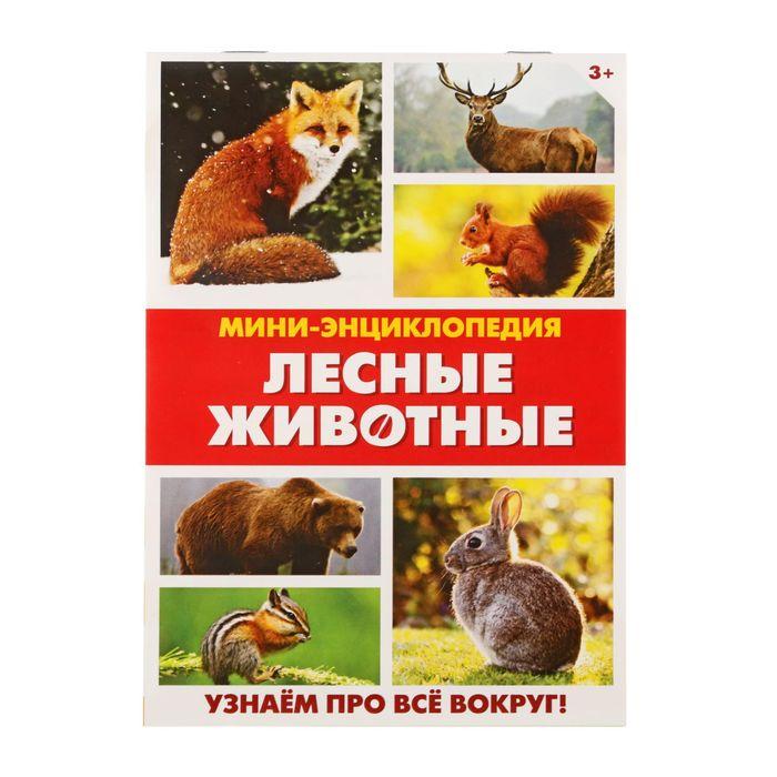 Мини-энциклопедия «Лесные животные», 20 страниц