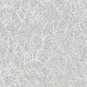 """Обои виниловые на флизелине АВАНГАРД 11-238-01 """"Оникс"""", 1,06x10 м"""