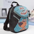 Рюкзак детский на молнии, 1 отдел, цвет голубой/коричневый