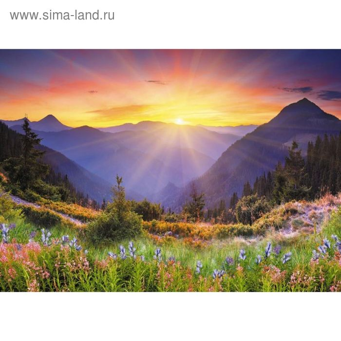 Фотообои Солнце взошло ЛЮКС 2,72 х 1,94 м (из 8 листов)