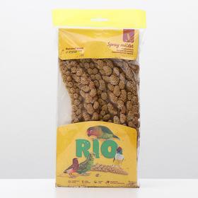 """Лакомство RIO """"Сенегальское просо в колосьях"""" для всех видов птиц, 100 г"""