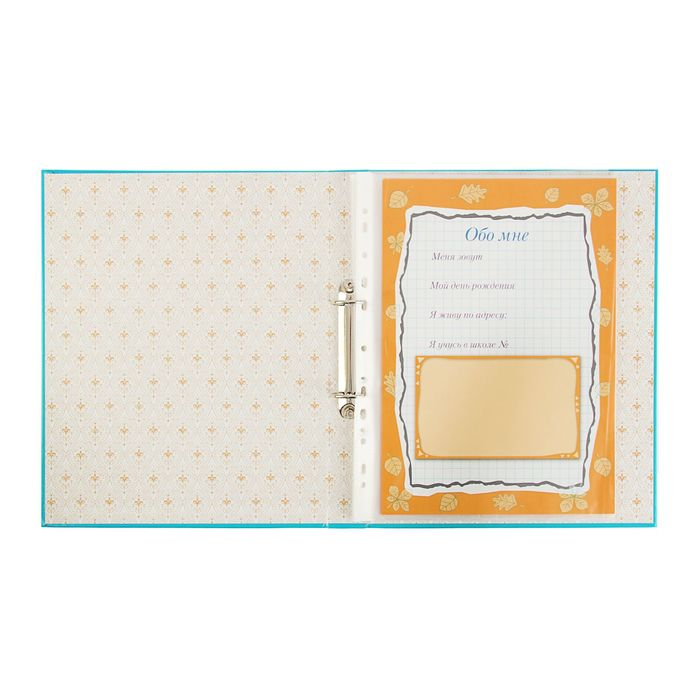 Папка-портфолио А4, 10 листов, (голубой) - фото 408707653