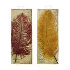 Перо подарочное гусиное Manuscript микс 3 цвета: багряный, шоколадный, золотой M-4501ST