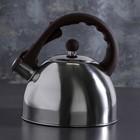 """Чайник """"Бэйсик"""", со свистком, макс. объем 2,5 л, фиксированная ручка"""