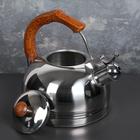 """Чайник со свистком """"Каштан"""", макс. объем 2,6 л, фиксированная ручка"""