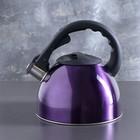 """Чайник со свистком 2,5 л """"Модерн"""", фиксированная ручка, цвет фиолетовый"""