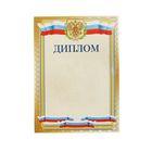 """Диплом """"Универсальный"""" символика РФ, золотая рамка"""