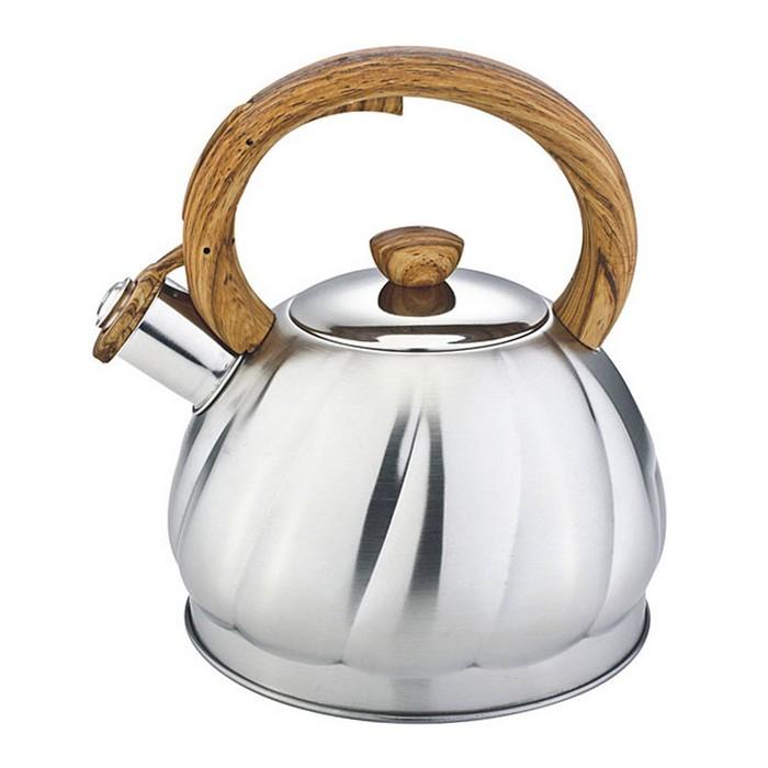 Чайник металлический 2л Premium