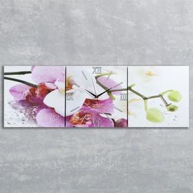 """Часы настенные, серия: Цветы, модульные """"Орхидеи"""", 35х110  см, микс"""