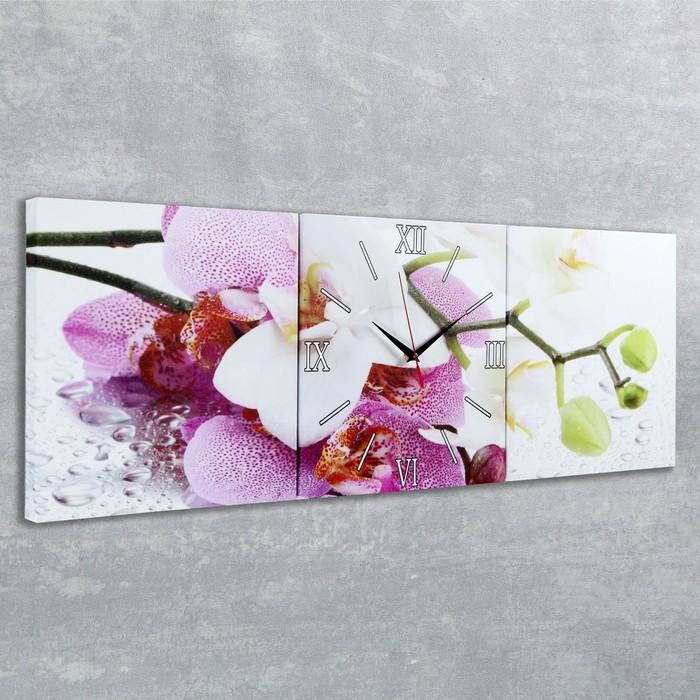 Часы настенные модульные «Орхидеи», 35 × 110 см
