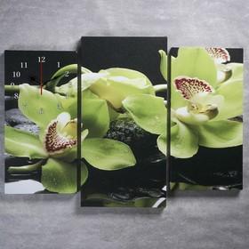 Часы настенные модульные «Зелёные орхидеи на камнях», 60 × 80 см