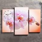 Часы настенные модульные «Розовая орхидея», 60 × 80 см