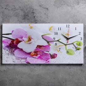 Часы настенные на холсте 'Орхидеи', 40х76 см  микс Ош