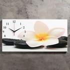 """Часы настенные, серия: Цветы, на холсте """"Белый цветок на камнях"""", 40х76  см, микс"""
