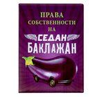 """Cover for avtodokumentov """"Eggplant"""""""