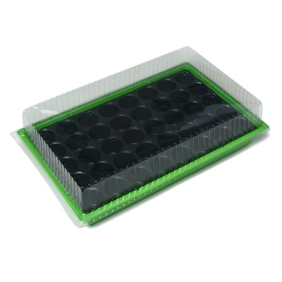 Мини-парник для рассады, 56,7 × 36 × 15,5 см, 1 вставка, 40 ячеек