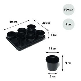Набор для рассады: стаканы по 520 мл (8 шт.), поддон 40 × 31 см