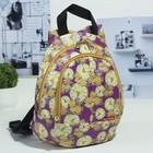 Рюкзак детский на молнии, 2 отдела, наружный карман, разноцветный