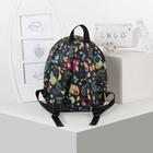 Рюкзак на молнии, 1 отдел, наружный карман, цвет чёрный