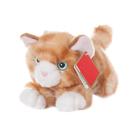 AURORA Игрушка мягкая Котик рыжий 22см