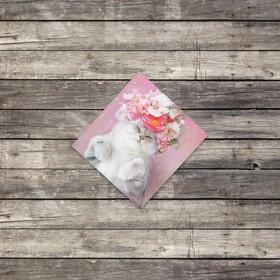 "Mini–card ""Cat with flowers"", 7 x 7 cm"