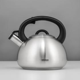 Чайник со свистком Virga, 3,8 л