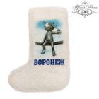 "Magnet-boots of felt ""Voronezh"""