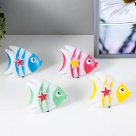 Ночник 4 диода 'Рыбка' 220V МИКС 7,5х9х2 см Ош