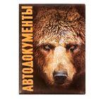 """Обложка для автодокументов """"Медведь"""""""