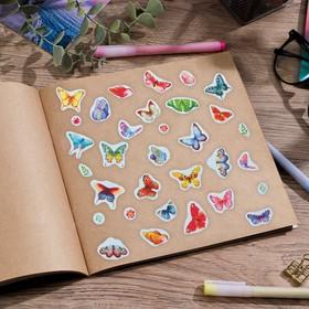 Наклейки бумажные 'Бабочки', 11 х 16 см Ош