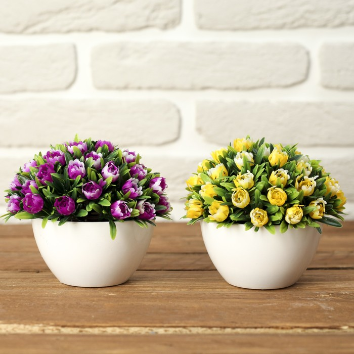 Цветы фото в горшочках