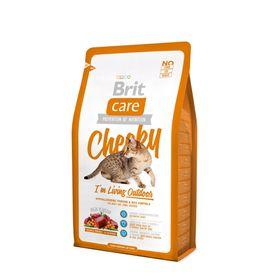 Сухой корм Brit Care Cat Cheeky Outdoor для активных кошек, 7 кг