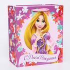"""Пакет ламинированный вертикальный """"Цветочного Дня Рождения!"""", Принцессы Дисней, 23 х 27 х 11.5 см"""