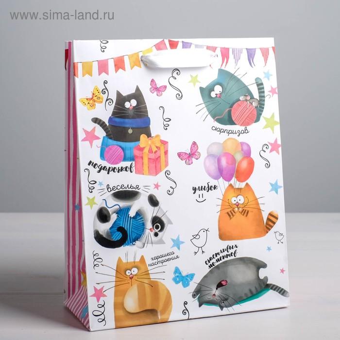 Пакет ламинированный вертикальный «Забавные коты», S 12 × 15 × 5,5 см