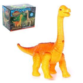 Развивающая игрушка «Динозавр» с проектором, ходит, световые и звуковые эффекты, МИКС
