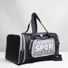 Сумка спортивная, отдел на молнии, 2 наружных кармана, цвет чёрный/серый
