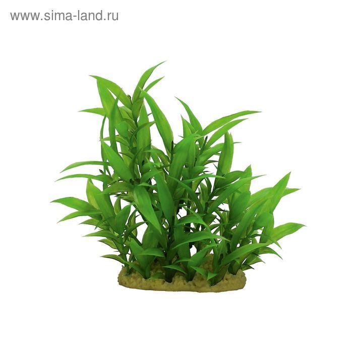 Комп. из искусств. растений ArtUniq Hygrophila siamensis 15 - Гигрофила сиамская, 15 см
