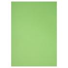 Бумага цветная А4 210*297 мм Canson Iris Vivaldi 1 л 240 г/м №27 Зеленое яблоко 200040804
