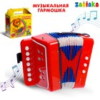 "Musical toy ""Accordion"", children's"