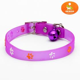 "The collar is made of cold-resistant soft plastic ""Feet"", 28, 5 x 1 cm, mix colors"