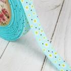 Лента репсовая «Ромашки», 15 мм, 22 ± 1 м, цвет голубой