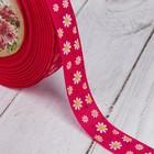 Лента репсовая «Ромашки», 15 мм, 22 ± 1 м, цвет малиновый